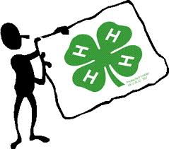 Cover photo for Mecklenburg County 4-H County Activity Day