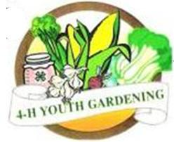 Cover photo for 4-H Youth Gardening News: 2014 Update