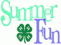Cover photo for 4-H 2015 Summer Fun Details