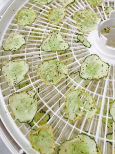 dried cucumber chips