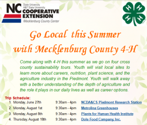 Cover photo for Sustainable Summer: Going Local With 4-H