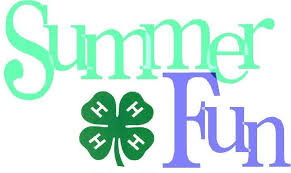 Cover photo for 2017 4-H Summer Fun!