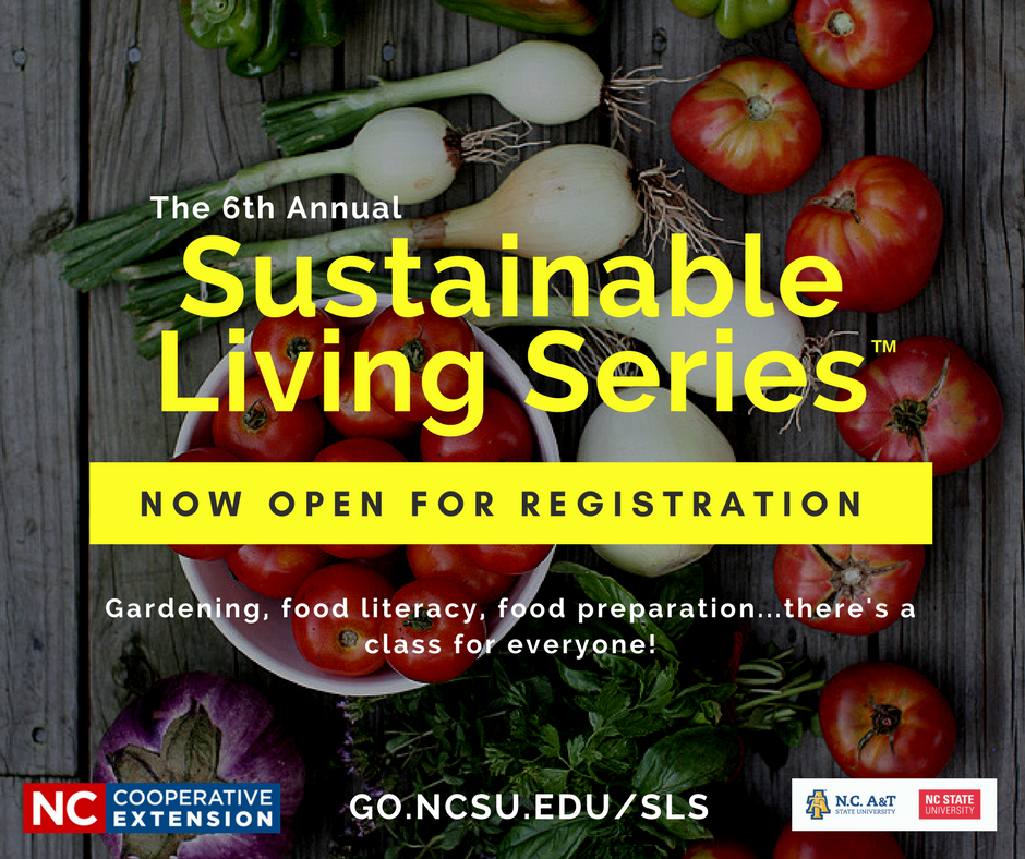 Sustainable Living Series poster