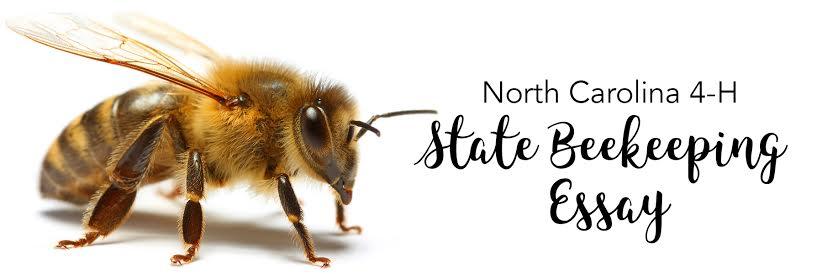 NC 4-H State Beekeeping Essay logo