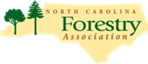 Cover photo for Are You a 4-H'er With a Forestry Interest?  Essay Contest May Be for You!