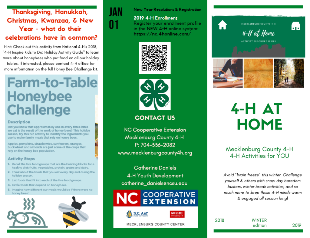 4-H at Home page 1 image
