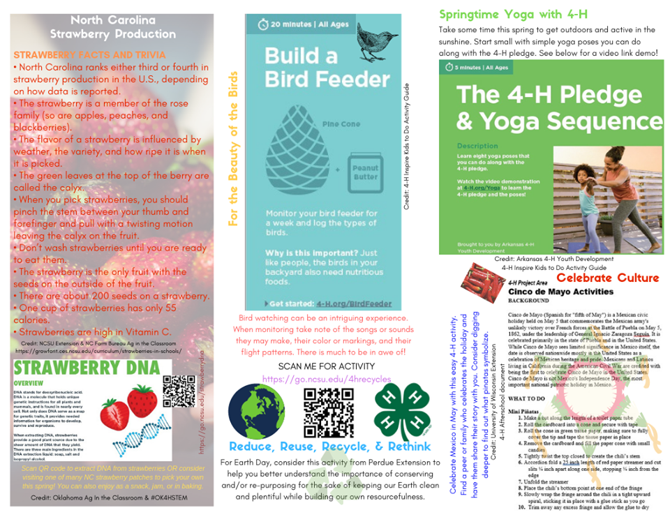 Image: Spring at Home 4-H Trifold Brochure (back)