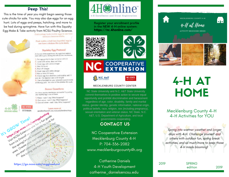Image: Spring at Home 4-H Trifold Brochure (front)