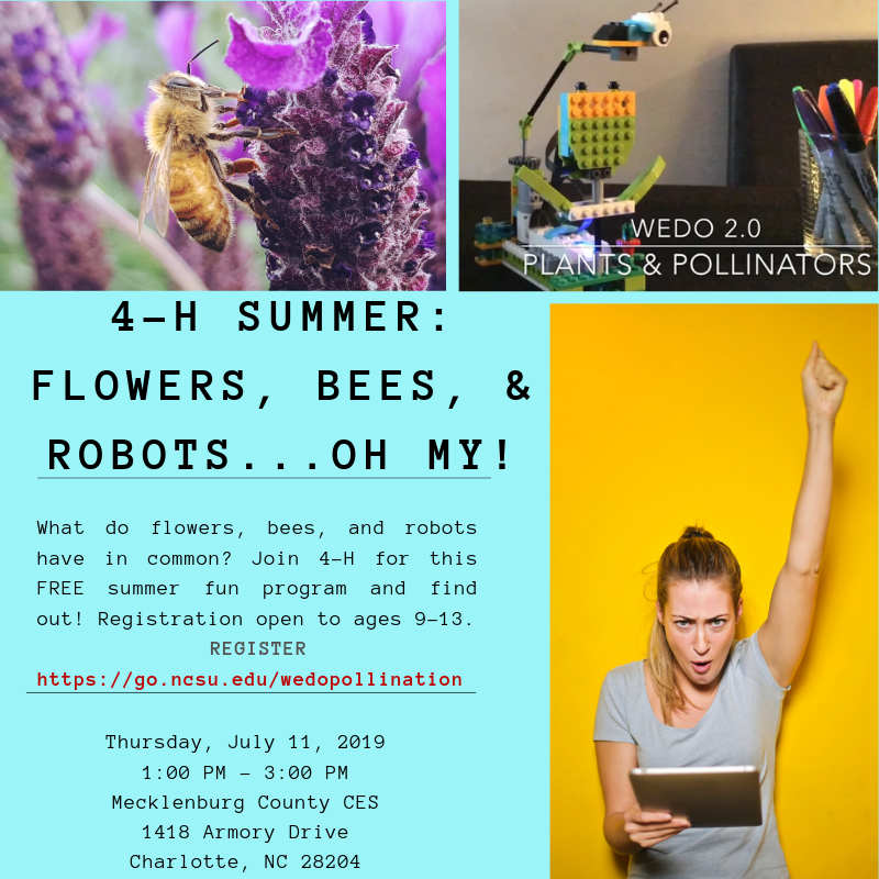 Bees flyer image