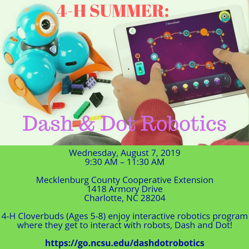 Dash and Dot flyer image