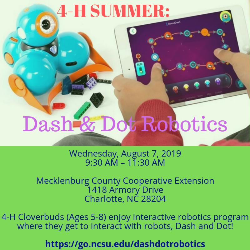 Dash and Dot flyer image