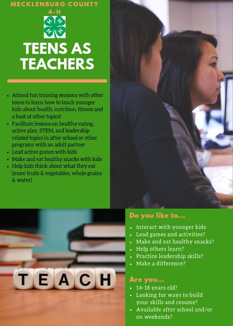 Teens as Teachers flyer image
