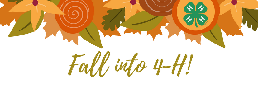 Fall into 4-H logo/header