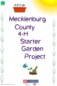 Cover photo for Mecklenburg County 4-H Starter Garden Project