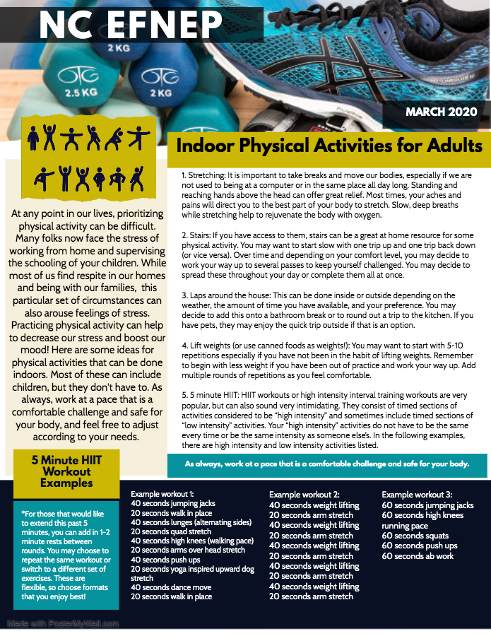 Indoor Physical Activities for Adults flyer image