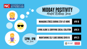 Cover photo for Midday Positivity Mental Wellness Series